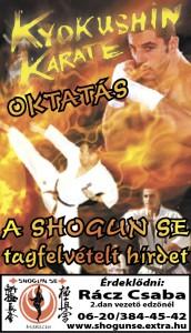 shogunhirdetes